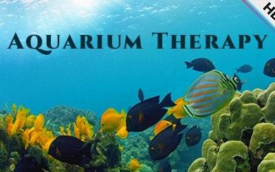Aquarium Therapy by Spectiv