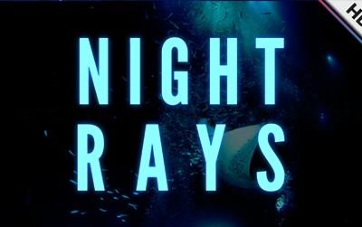 Night Rays